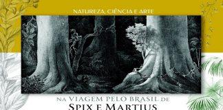 Natureza, ciência e arte na Viagem pelo Brasil de Spix e Martius