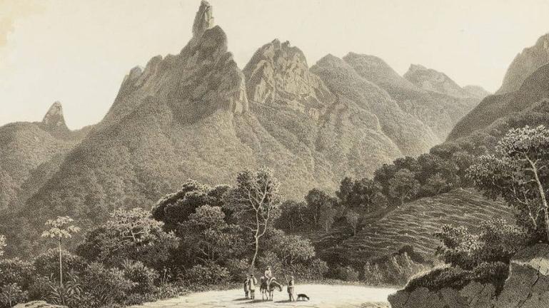 O mapa de Von Martius ou Como escrever a história natural do Brasil